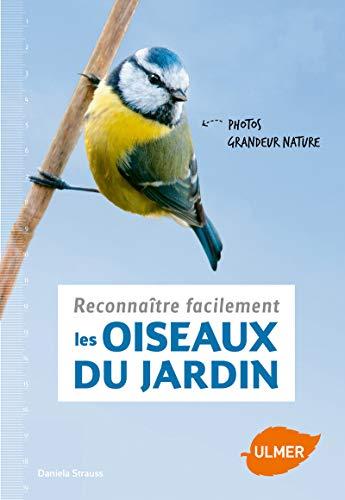 Reconnatre Facilement Les Oiseaux Du Jardin