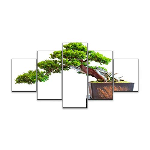 Night in U.S Canvas Art Wall Old Distinctive Bonsai yew Tree Taxus baccata Paintings Vintage Prints Home Decor Artworks Gift Ready to Hang for Living Room 5 Panels Large Size