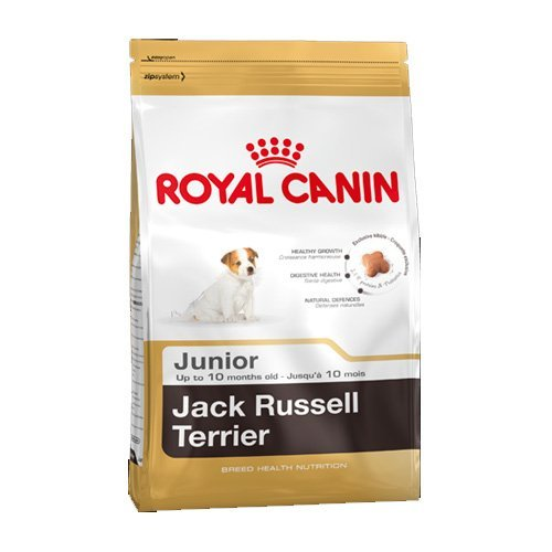 Royal Canin Comida para perros Jack Russell Junior 3 Kg ⭐