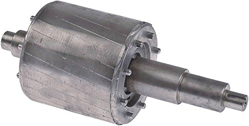 Fimar - Rotor para picadora de carne AB22A, TR22S, diámetro de 89,2 mm, eje de 25 mm x 220 mm, modelo 22