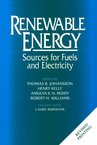 Price comparison product image Renewable Energy: Sources For Fuels And Electricity