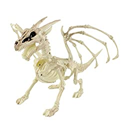 Dragon Anatomy Physiology And Reproduction Dragon University Crunchyroll has licensed it for online english distribution. dragon anatomy physiology and