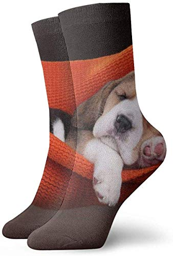 Kleine Beagle Puppy Slapen In Een Hangmat Unisex Mode Casual Crew Sokken Ronde hals Sokken Jurk Sokken 30 CM
