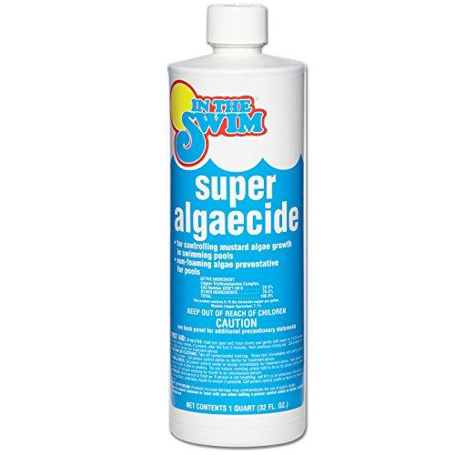 In The Swim Super Pool Algaecide - 1 Quart