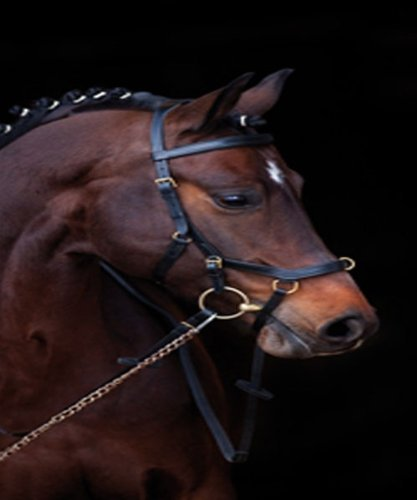 Horseware Ireland Rambo Micklem Comp Bridle/rein Black Standard Horse…