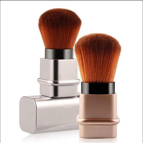 SMX&xh Blush Pinceau Brosse De Maquillage TéLescopique Fard à Joues Femmes Brosse Ensembles Or Argent 2Pcs , 2pcs