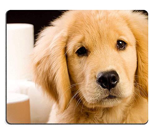 Mauspad Naturkautschuk Mousepad Weich Flauschig Golden Retriever Hündchen Hundehütte Mit Toilettenpapier trainiert