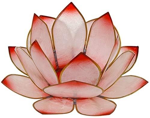 Lotus-Licht Sonnenaufgang rosé
