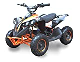 SYX MOTO 36V 800W Bruiser Kids Mini ATV Dirt Quad Electric Four-Wheeled Off-Road Ride on Vehicle, 5-7.5-12.5mph, with Reversing Switch, Orange