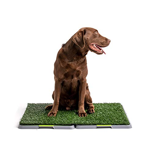 Silver Paw Potty Patch Dog Potty – Replaces Wee Wee Pads – The Best Pet Turf Potty Training Tool – Works for Puppies & Adult Dogs – For Big Dogs