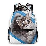 COVASA Sac à dos d'école de style décontracté Sac à dos de voyage,vue de dessus de chat assis dans un bac à litière,sac à dos léger pour adulte et enfant pour ordinateur portable 15,6 '