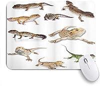 NIESIKKLAマウスパッド 爬虫類のカラフルな凝視ヒョウヤモリ家族原始的な野生生物アート ゲーミング オフィス最適 高級感 おしゃれ 防水 耐久性が良い 滑り止めゴム底 ゲーミングなど適用 用ノートブックコンピュータマウスマット