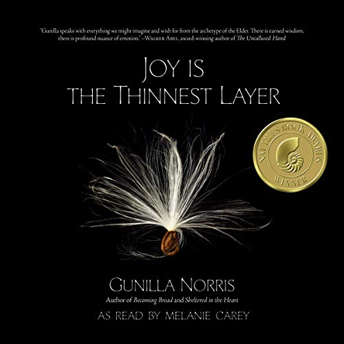 Joy Is the Thinnest Layer audiobook cover art