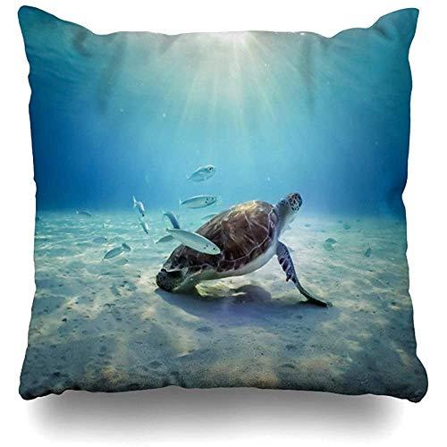Kussensloop Abc Antillen Onderwaterschildpadden Pelikanen Uitzicht Rond Kleine Vogel Caribisch Curaçao Nederlands Home Decor Kussensloop Kussensloop