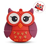 LEIZHAN Cute USB Flash Drive 16GB Owl Shape Computer Memory Stick USB 2.0 Pendrive for Teachers, Students, Family and Friends