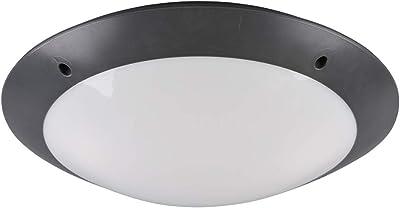 Reality Leuchten R60502042 Luminaire, Anthracite, Durchmesser 33cm