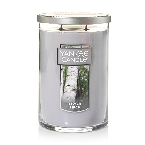 Yankee Candle Large 2-Wick Tumbler Candle, Silver Birch,1303342Z,Gray