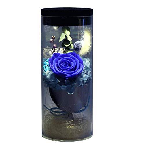 Feisui Flor eterna preservada Fresco Flor de Cristal de la Cubierta Flores Coloridas con la luz Colorida del LED transforma, día de San Valentín, día de la Madre, cumpleaños