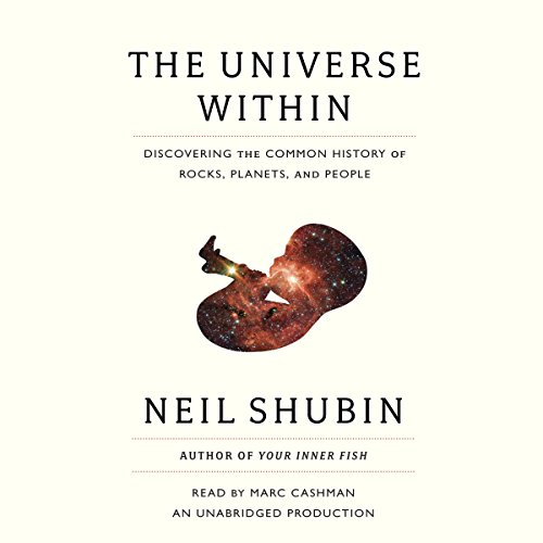 The Universe Within audiobook cover art