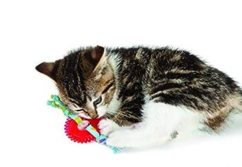 Petstages Kitty Chew Wheel Jouet à Mâcher/Mordre pour Chat