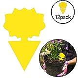 Lot de 12 pièges adhésifs, anti-mouches et champignons, pour intérieur et extérieur, protège la plante, non toxique et inodore, (forme de fleur).
