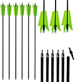 AMEYXGS 12pcs 30 Inch Archery Mix Carbon Spine 400 Flu Flu Arrows Replaceable Screw-in Arrow Tips with 4 Turkey Feather for Compound Bow Recurve Bow Competition and Target Practice (Green)