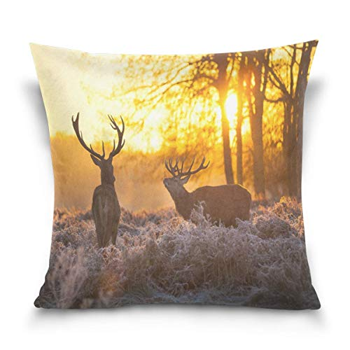 lucies Throw Pillow Case Decorative Cushion Cover Square Pillowcase, Hipst-er Deer Landscape Nature Scenery Sofa Bed Pillow Case Cover(18x18inch) Twin Sides