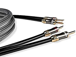 Migliora il tuo impianto grazie ad un trasferimento audio di grande purezza con Ricable. Ultimate Speaker, il cavo di Potenza Hi-Fi con Geometria twistata e conduttori in puro rame OFC 99,999% che permette una riproduzione sonora pulita e di qualità....