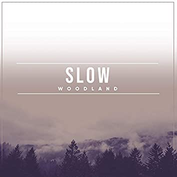 Slow Woodland, Vol. 4