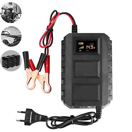 Charger-EJOYDUTY Cargador de batería Inteligente de 12V 20A, para el cortacésped del Barco del Coche Batería de ácido de Plomo sellada Marina, Mantenimiento de batería portátil de Carga rápida