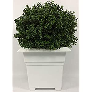 Outdoor Artificial UV Rated 2 ft Boxwood Bush Ball Topiary Tree Potted with Square White Planter. Total Height with Planter is 24 inches.