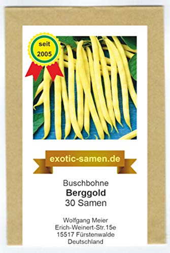 Buschbohne - Berggold - 30 Samen