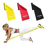 ActiveVikings - Juego de bandas de ejercicio con 3 fuerzas, longitud de 2 m, ideal para masa muscular, fisioterapia, pilates, gimnasia, yoga y crossfit, cinta de resistencia