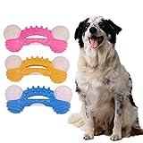 R-WEICHONG Pet Backenzahn Spielzeug, TPR Hund Beißfest Gummi Messerring Knochenform Zahnmassage Reinigungsspielzeug