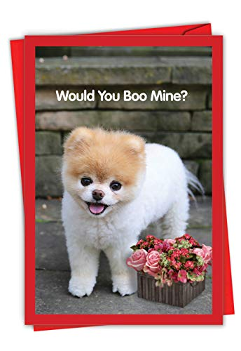 The Best Card Company - Happy Valentine's Day Greeting Card with Envelope - Loving, Heartfelt Notecard for Valentine (1 Card) - Boo My Valentine A C6754AVDG