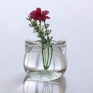 Weichuang Jarrón de cristal en forma de gato, florero hidropónico para plantas de terrario, contenedor para decoración de ...