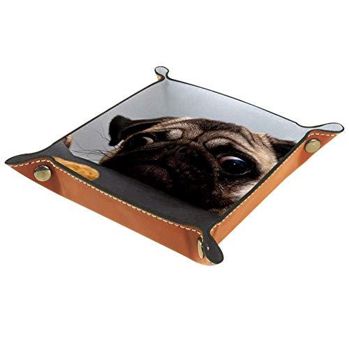 XiangHeFu Hund und Keks Valet Tray Ledertablett Leder Catchall Schlüssel Handy Münzkasten für Schlüsselgeld Nachttisch Storage Container Box Organizer