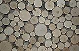 Wilson Enterprises White Birch Fill-A-Space Logs