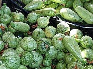 10 graines de FB137 Ronde de Nice Zucchini