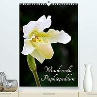 Wundervolle Paphiopedilum (Premium, hochwertiger DIN A2 Wandkalender 2022, Kunstdruck in Hochglanz): Bluetenportraits dieser wundervollen Orchideengattung (Planer, 14 Seiten )