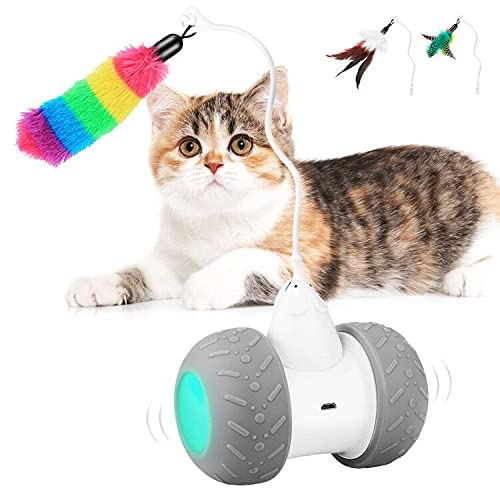 Interactive Cat Toy Robotic, Automatic Kitten Toy Robot Ball, USB Charging 2000mAh Large Capacity Battery Working 7-14 Days, Auto 360 Degree Rotating All Floors & Carpet Available, Comes with Feathers