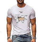Camiseta Hombres Verano Casual Cuello Redondo Creativo Patrón Cachorro Shirt Deportiva Hombre Slim Fit Elasticidad Cómoda Shirt Correr Jogging Entrenamiento Manga Corta Hombres A-DG1 3XL