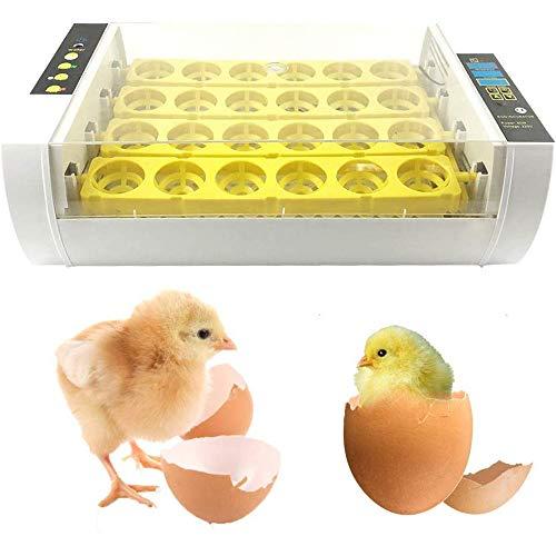 BeautySay ABC Incubatrice per Uova, incubatrice di 24 incubatrici con Controllo di Temperatura e umidità, Timer di Conto alla rovescia, incubatrice Digitale per Uova per polli, Anatre, oche e Uccelli