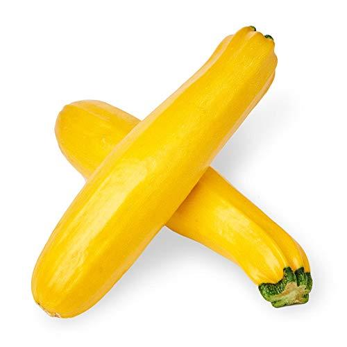 Sperli Gemüsesamen Zucchini Soleil, F1, grün