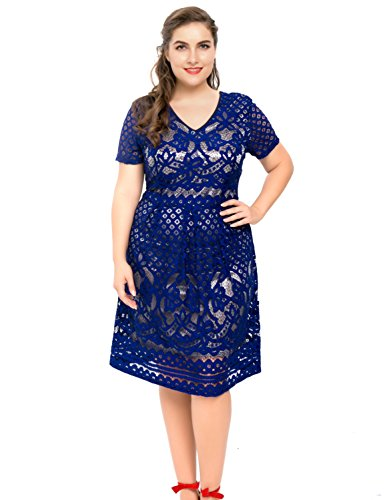 Chicwe Women's Plus Size Lined Floral Lace Skater Dress - Knee Length Casual Party
