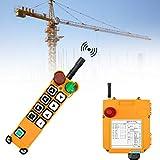 MXBAOHENG Mando Puente Grua Con Función de Autobloqueo F24-8D Mando para Grua Control Remoto de Grúa Inalámbrico para Grúa Polipasto 18-65V (1 transmisor y 1 receptor)