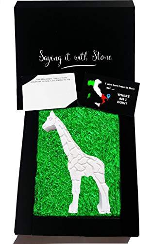 Girafe faite à la main en Italie - Symbole de beauté, d'élégance, de vision et de prévoyance, de protection et de douceur d'esprit - Coffret cadeau et carte de message inclus - Fête des Pères Papa