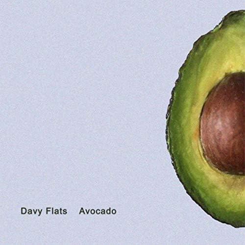 Davy Flats