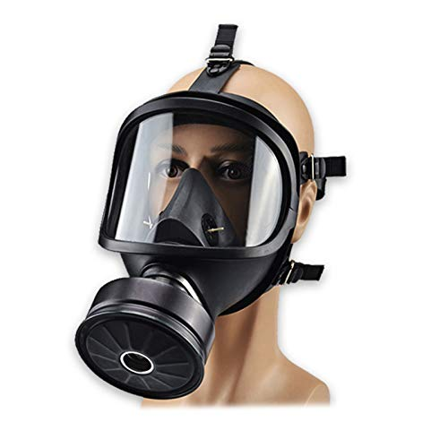 PPWYY Mask Full Face Head Ventilative Biochemical Gas Mask Widely Used in Organic Gas,Paint Spary, Chemical,Woodworking,Dust Protectio