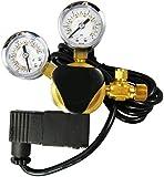 Premium AQUATEK CO2 Regulator with Integrated...